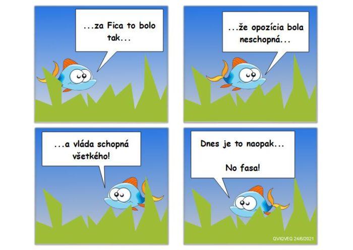 Zo života rybky
